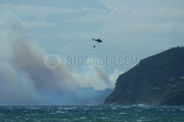 Helicopter water bomber on the Var coast France