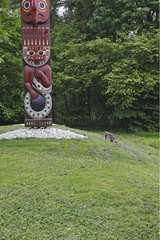 Raccoon beside a totem Stanley Park Vancouver