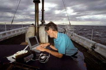 Traque par satelite du Requin pélerin Ile de Man Royaume-Uni