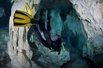 Diver exploring the Cenote Pet Cemetery - Yucatan Mexico
