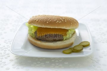 Cheesburger France