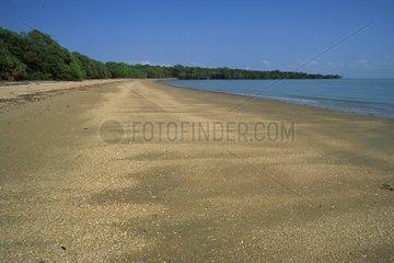 Plage de sable déserte bordée de forêt NT Australie
