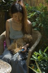 Woman taking the temperature of puppy dog