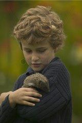 7 years old boy carrying an European Hedgehog orphan