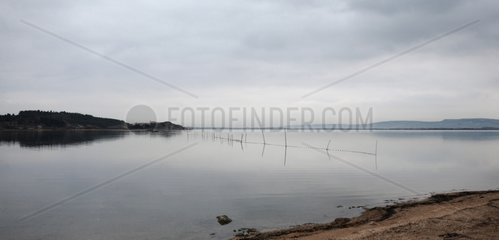 Lagoon of Roussillon in winter Narbonne Aude France