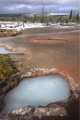 Volcanic sources in Mid Basin Yellowstone United States