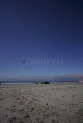 Low Perseids and summer triangle above a beach