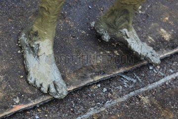 Feet of a construction worker in shipbreaking Bangladesh