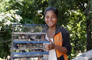 Saleswoman birds at Wat Phnom Cambodia