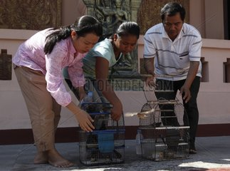 Couple releasing birds after a vow to Wat Phnom Cambodia