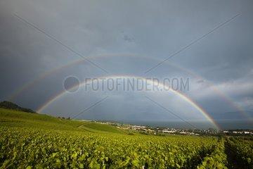 Double rainbow in the sky vineyards of La Côte Vaud Switzerland