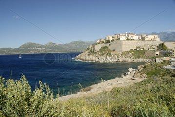 Citadel of Calvi Corsica France