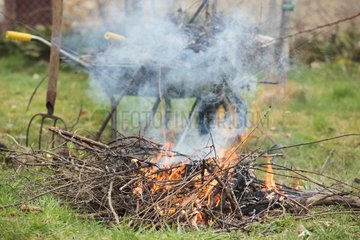 Burning of pruned branches in a garden