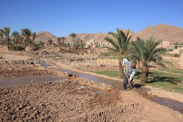 Man opening a valve to irrigate land in a field Iran