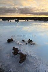 Lava Field of Blue Lagoon Reykjanes Iceland