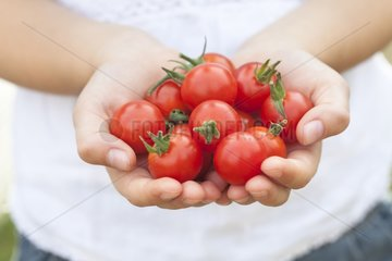 Girl carrying cherry tomatoes in hands