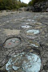 Site of dinosaur tracks Loulle Jura France