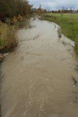 Hermance after the flood work renaturation Switzerland