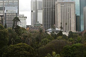 Skyscrapers and Royal Botanic Gardens in Sydney Australia