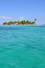 Marine reserve of Laughing bird caye NP Belize Barrier Reef