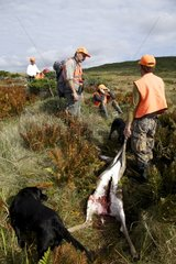 White-tailed Deer shot and hunter Saint-Pierre and Miquelon