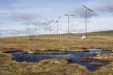 Wind farm Miquelon Saint Pierre and Miquelon