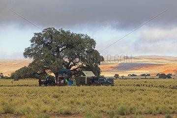 Camp Sesriem Namib Desert Namibia