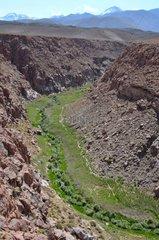 Rio puritana Atacama Altiplano Chile