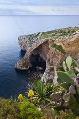 Zurrieq Blue Grotto Qrendi Village coastline Malta Island