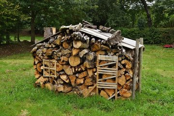 Pile of firewood in a garden