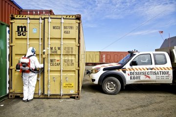 Insect control of a container New Caledonia