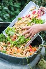 Composting of kitchen organic scraps