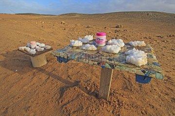 Vente de Sel naturel sur la côte Atlantique en Namibie