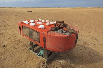 Sale of natural salt on the Atlantic coast in Namibia
