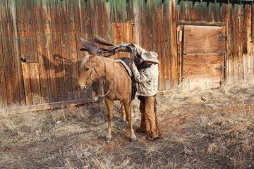Cowboy saddling his horse The Hideout Guest Ranch Wyoming