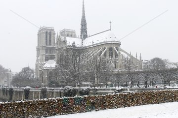 Notre-Dame de Paris seen from the bridge of the archdiocese in winter
