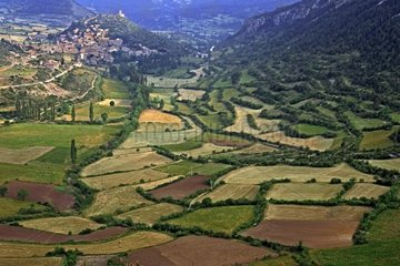 Agroforestry landscape in the Catalan Pyrenees Spain