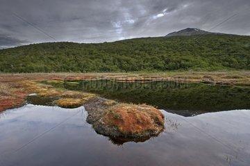 Los Glaciares National Park Tierra del Fuego Argentina