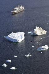 Cruise and Antarctic icebergs
