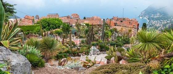 Exotic garden of Eze on the heights of the village - France