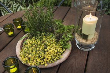 Thyme and rosemary with candles on a garden table