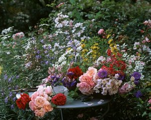 Bouquets on a garden table