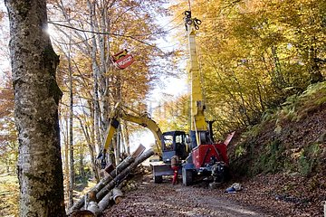 Cable logging in forest sloping Pyrenees France