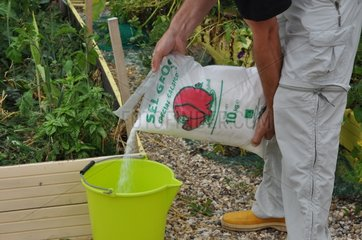 Weeding of a garden with salt