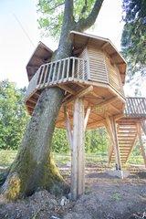 Wooden chalet perched on trees Passavant la Rochere
