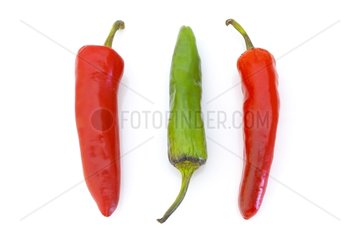 Hot peppers in studio
