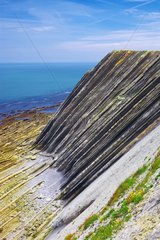 Cliffs of Flysch in Basque country