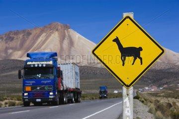 llamas sign at highway between Chile and La Paz Bolivia