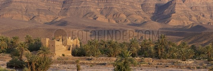 Ksar and palm trees in the Draa Valley Morocco