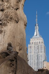 Squirrel on a tree with Empire State building on background